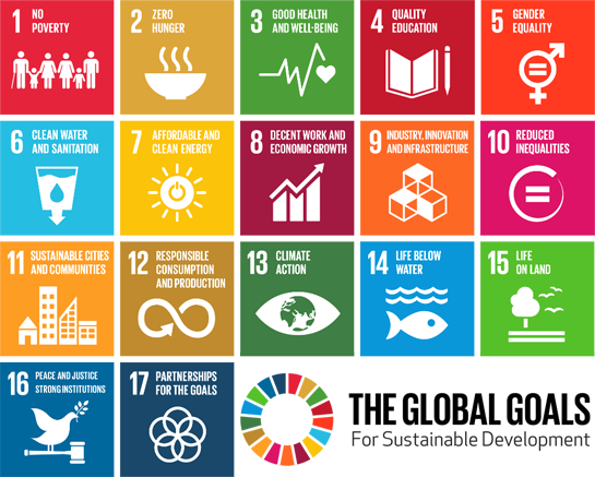 blokkenschema Sustainable Development Goals